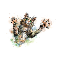 cat playing from a splash watercolor hand vector image