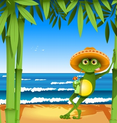 frog on the beach vector image