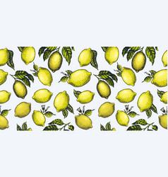 lemon seamless pattern hand drawn fruit vector image