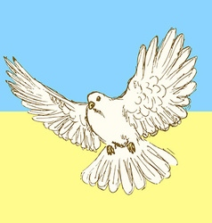 Sketch peace dove for Ukrainian war vector image