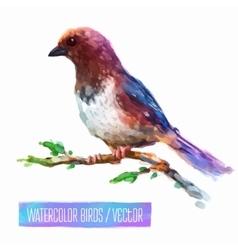 watercolor style of bird vector image