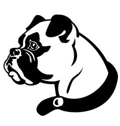 boxer head black and white vector image