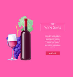 red wine sorts web page on vector image