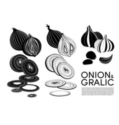 Monochrome organic vegetables icons set vector