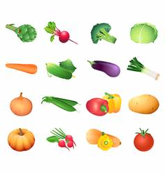 calorie table vegetables vector image vector image