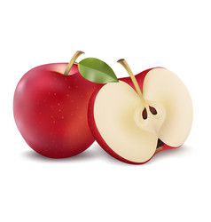 red apple with green leaf and apple slice vector image