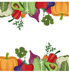 vegetables fresh ingredients poster vector image vector image