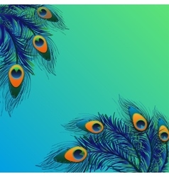 Background design with peacock feathers vector