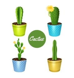 Cactus In Pots Set vector