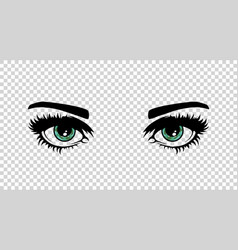 green female eyes with long lashes and make vector image