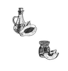 papaya oil icons set hand drawn sketch extract vector image