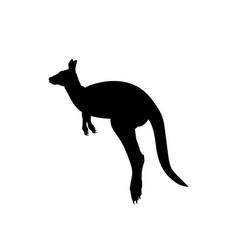Silhouette kangaroo animal australian wildlife vector
