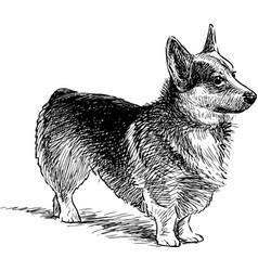 Watching dog vector