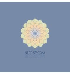 Geometric flower in fashionable colors Template vector image