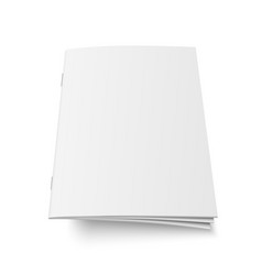 mock up of book or magazine vector image vector image