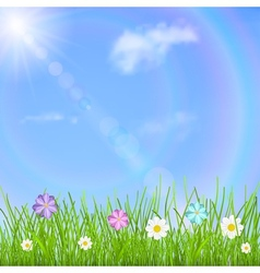 Background with sky sun grass and flowers vector