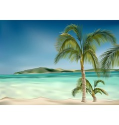 Beach and Palms vector