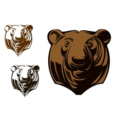 Big grizzly bear vector