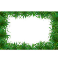 colorful naturalistic frame from the leaf palm vector image