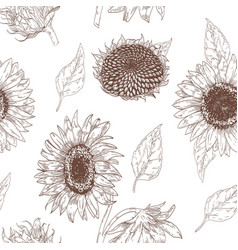Elegant floral seamless pattern with sunflower vector