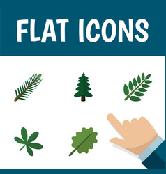 Flat icon ecology set of park alder acacia leaf vector