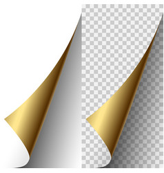 Golden metallic realistic paper page corner vector