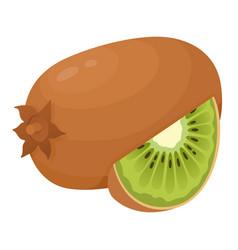 kiwi fresh ripe and juicy chinese gooseberry vector image