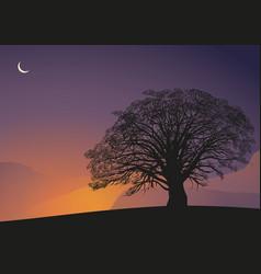 Moonlight night tropical tree vector