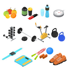 sport color icons set isometric view vector image