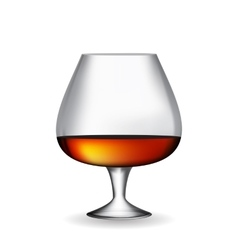 Glass Collector 50 year-old French Cognac on White vector image