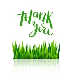 Thank you with tulip flowers vector image vector image