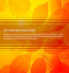 Fall abstract floral background vector image vector image
