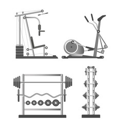 training apparatuses and weights on stands vector image vector image