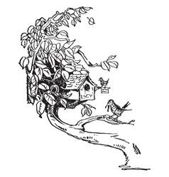 Birdhouse in tree limb vintage vector