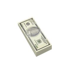 bundle of money isolated isometric icon vector image