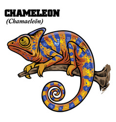 Chameleon in hand drawing style vector