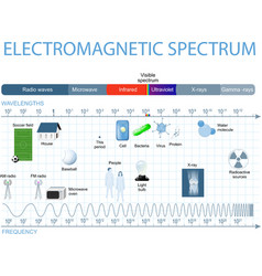 Electromagnetic spectrum vector image