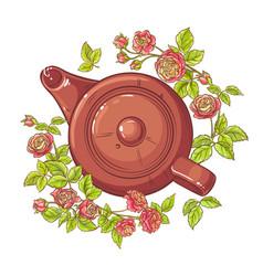 rose tea vector image