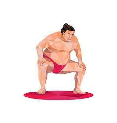 Japanese Sumo Wrestler Squat Low Polygon vector image