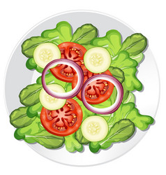 A healthy vegetable salad vector