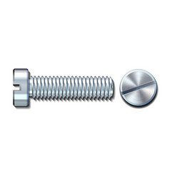 bolt screw metal pin with head slot and side view vector image