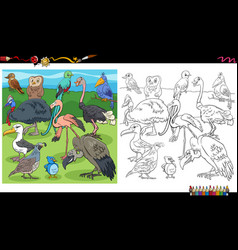 Cartoon birds animal characters group coloring vector