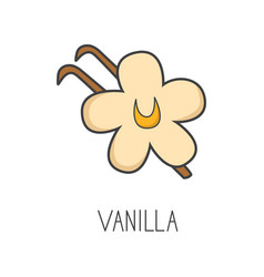 Vanilla line cooking isolated vector