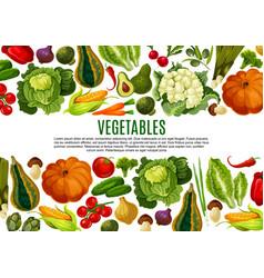 Vegetable and mushroom border banner design vector