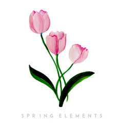 watercolor spring floral collection vector image