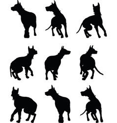 dog silhouette vector image