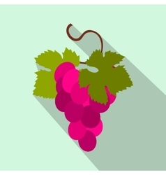 Grapes bunch icon flat style vector image vector image