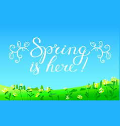 hello spring hand drawn lettering with flourish vector image