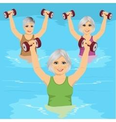 senior women making aqua gym exercises vector image