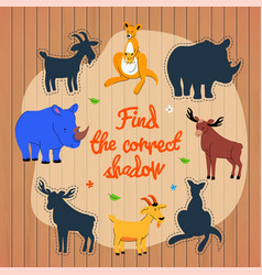 find correct shadow game template vector image